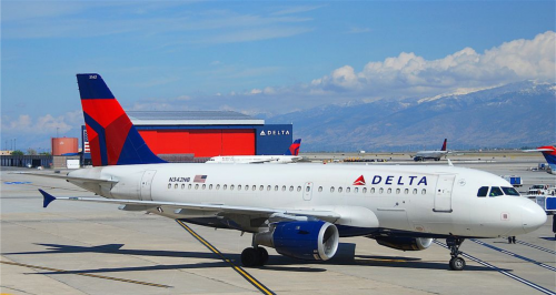 Machinists union calls for US government to investigate Delta Air Lines